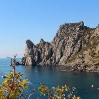 Крым, Новый Свет :: Cветлана Свистунова