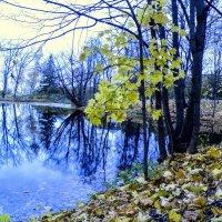 Пушкинскими местами #5 :: Андрей Головкин