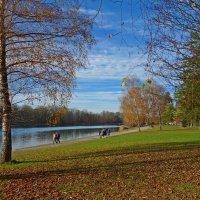 Был тихий день обычной осени.... :: Galina Dzubina