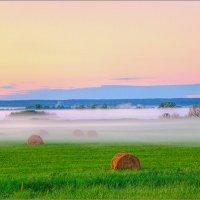 Предрассветный туман :: Юрий Спасенников