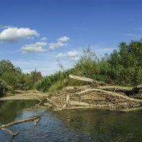 Река Уруп :: Игорь Сикорский