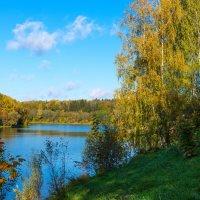 Осень в подмосковье :: Владимир Безбородов