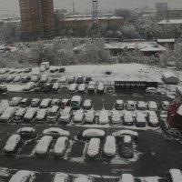 Новосибирск. Первый снег. :: Олег Афанасьевич Сергеев