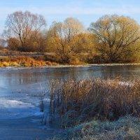 Первый лёд реки всегда внезапен... :: Лесо-Вед (Баранов)
