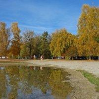 Летит в мои ладони осень    Последним золотом берёз... :: Galina Dzubina