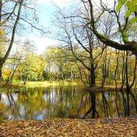 Озёра в октябре :: Маргарита Батырева