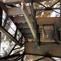 Лестница на Смотровую вышку. :: Anna Gornostayeva