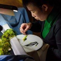 Вышивальщица по шелку :: Илья Шипилов
