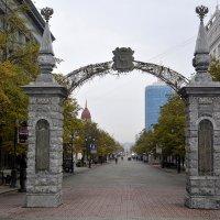 Добро пожаловать в Челябинск!!! :: Дмитрий Петренко