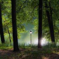 В парке :: Anatoliy Pavlov