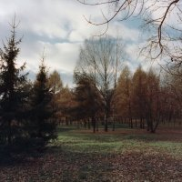 Октябрь. :: Валерий Молоток