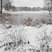 Первый снег! :: Владимир Шошин