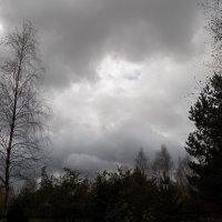 Осень небесная. :: Регина Пупач