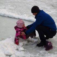 Не дождалась зимы :: Андрей Лукьянов