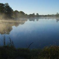 Туман над прудом :: Федор Пшеничный