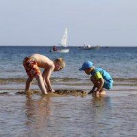 Построим город из песка :: Мария Самохина