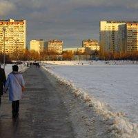 Чем не зима?! :: Андрей Лукьянов