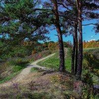 Золотая осень Nr.3 :: Людвикас Масюлис