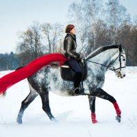 Девушка с лошадью :: Сергей Романцев