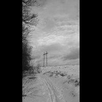 Зимняя дорога :: Виктория Нефедова