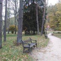 Осень в Сигулде :: Mariya laimite