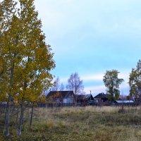 Заполярные деревни :: Ольга