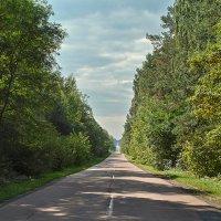 Путь вдаль. :: Андрий Майковский