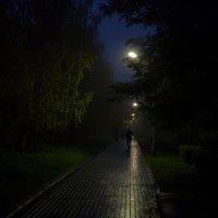 Вечер (СЕРИЯ)2 :: Андрей Михайлин