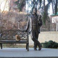 кот  и пёсик  певца :: Евгений БРИГ и невич
