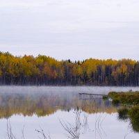 Утро на озере :: Геннадий Г.