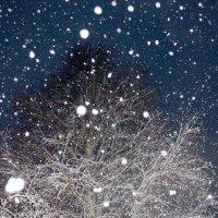 Снежная ночь в карельской деревне. :: Андрей Скорняков