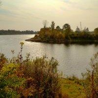 речной пейзаж. Сож :: Александр Прокудин