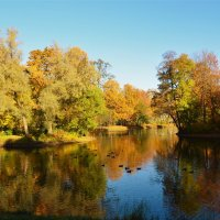 На осеннем пруду... :: Sergey Gordoff