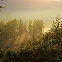 Солнечное утро с туманом :: Сергей Чиняев