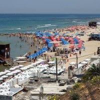 Лето на море :: mikhail