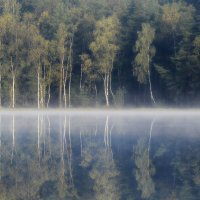 Туманное зеркало..... :: Юрий Цыплятников