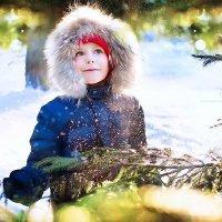 зима вернулась :: Екатерина Бондаренко
