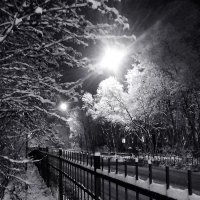 Зима пришла... :: Анна Приходько