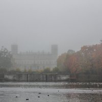 Туманное утро :: Алёнка Шапран