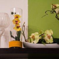Цветы :: Kristina Suvorova