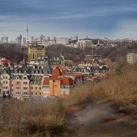 Вид с Замковой горы. Киев. :: Наталия Скрипка