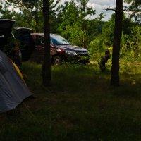 Наш Лагерь :: Александр Березуцкий (nevant60)