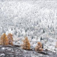 Осенний рубеж :: Влад Соколовский