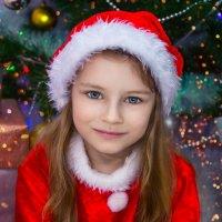 Скоро Новый год :: Tatsiana Latushko