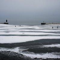 Вид с пристани в месте впадения Портового канала в Финский залив :: Елена Павлова (Смолова)