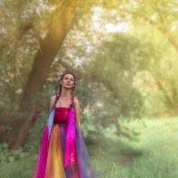 Летняя фотосъемка :: Елена Ельцова