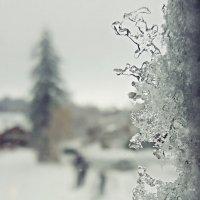 Зимний день на Хоккайдо :: Tatiana Belyatskaya