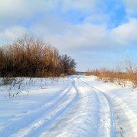 Вот и декабрь наступил.. :: Андрей Заломленков