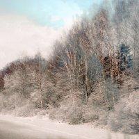 Утро в дороге :: Юрий