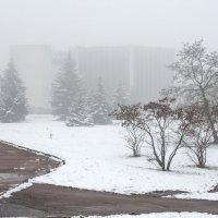 Первый снег и туман :: Сергей Тарабара
